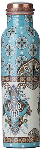 Amazon Brand - Solimo Printed Copper Bottle, 1 Litre (Frozen Hue)