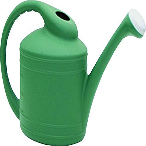 Southern Patio 2 Gallon Watering Can, Fern