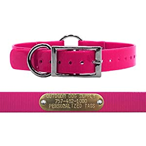 Outdoor Dog Supply 1″ Wide Solid Ring in Center Dog Collar Strap with Custom Brass Name Plate (21″ Long, Pink)