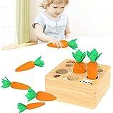 Romote Steckwürfel aus Holz Spielzeug Pädagogisches Holzspielzeug für Kleinkinder, Karottenernte...