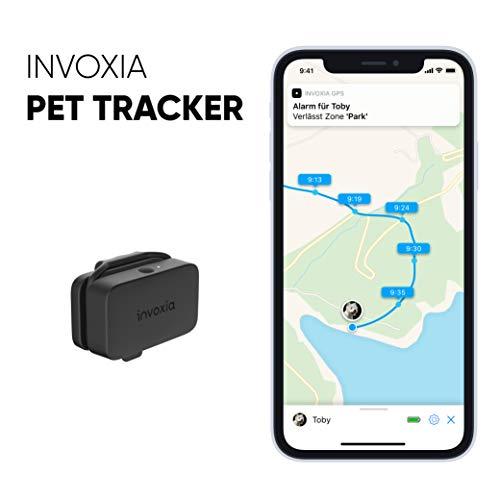 Invoxia Pet Tracker - GPS-Tracker Für Katzen Und Hunde Mit Aktivitätverfolgung - Einschließlich ABO - Lange Akkulaufzeit - Leicht Und Klein