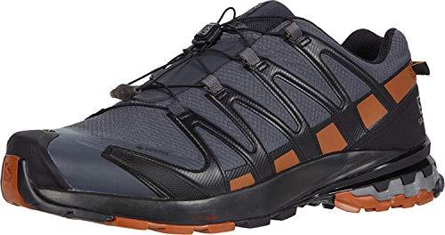 Salomon Herren Trail-Running-Schuhe, XA PRO 3D v8 GTX, Farbe: Schwarz (Ebony/Caramel Cafe/Black), Größe: EU 44 2/3