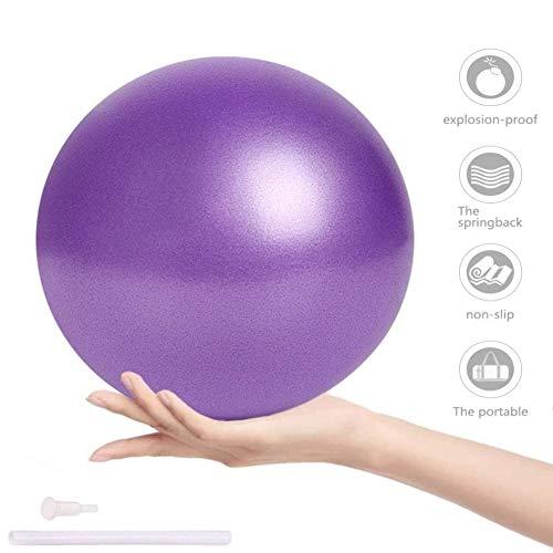 ZHOUZHOU Pelota de Mini Pilates 25cm Pelota de Ejercicios de Sports Balón de Yoga para Ejercicios Abdominales Masaje y Gimnasio en Casa y Ejercicios básicos de rehabilitación de Hombros