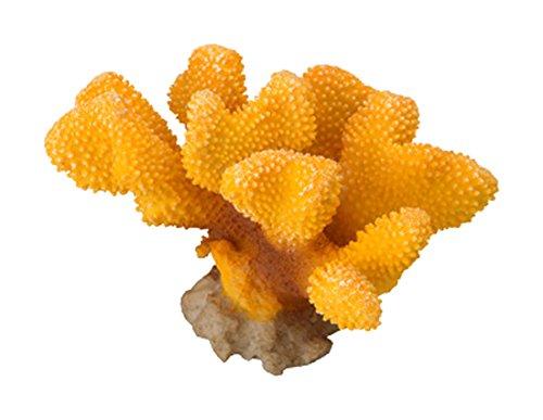 Aqua Della Aquariumdekoration Coral Pavona Cactus, Yellow