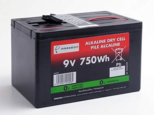 Cegasa - Batterie Luftsauerstoff Alkaline 6AS3/90D 9V 90Ah