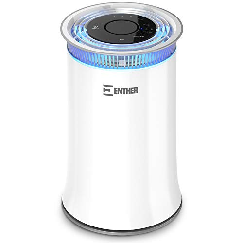 Product Image of the Enther Air Purifier For Mold
