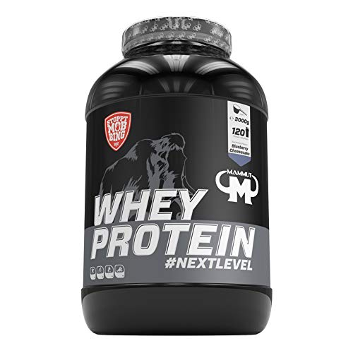 Mammut Nutrition Whey Protein Blueberry Cheesecake, 3000 g