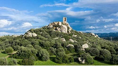 1000 Pezzi Puzzle Vista Aerea del Castello di Pedres A Olbia in Sardegna Hobby Home Decoration Fai da Te
