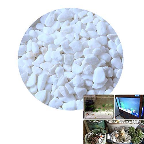 Ivie Petite Blanc Pierre pour Aquarium, Aquarium, Terrarium, Vase, Plantes, décoration de Jardin (200grams)