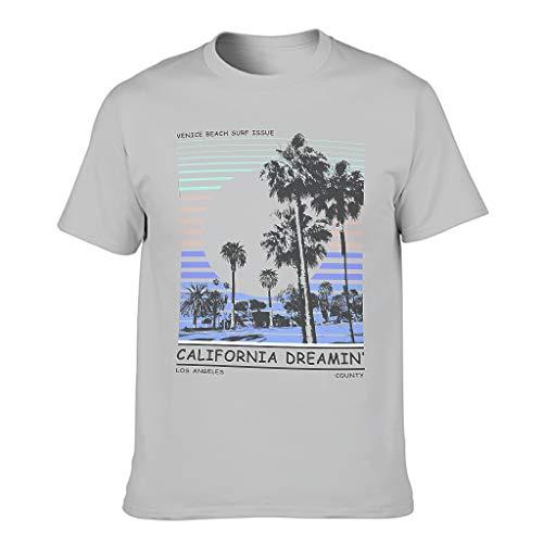 Kalifornischer Traum 3D Druckten Männer T-ShirtsRundhalsausschnittTee Regular Fit T-Shirt SpaßT-Stücke Silver Gray s