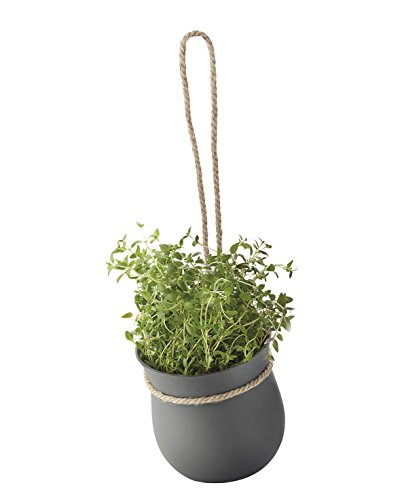 Rig-tig by Stelton Grow-it Pot à Herbes, Gris/Noir, 13 x 13 x 13 cm, Z00130