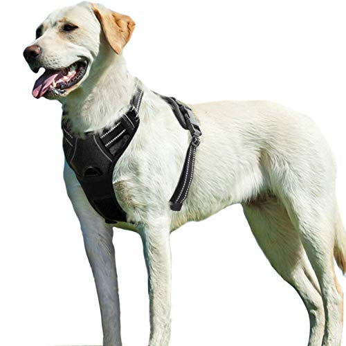 Eagloo Hundegeschirr Geschirr für Kleine und Mittlere Hunde Schwarz XL, Anti Zug Brustgeschirr No Pull Sicherheitsgeschirr Auto Dog Harness Labrador Joggen