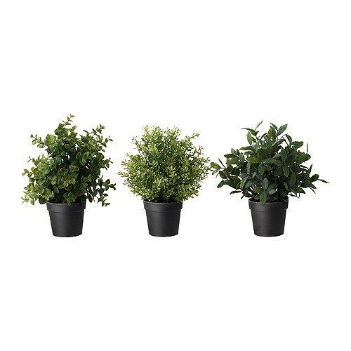 ★FEJKA / 造花鉢植え / ハーブ/※種類はおまかせください♪[イケア]IKEA(50191993)
