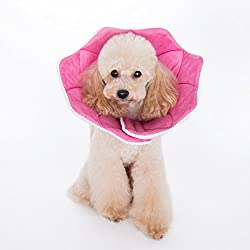 Stylish cone collar