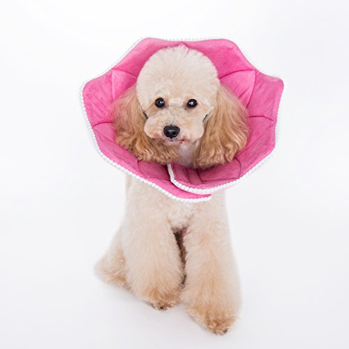 Alfie Pet - Noah Recovery Collar (for Dogs and Cats) - Pattern: Pink Pom Pom, Size: Large