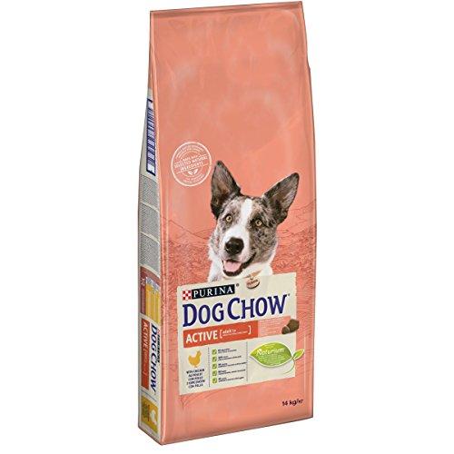 DOG CHOW Chien Active Croquettes avec du Poulet pour Chien Adulte 14 kg