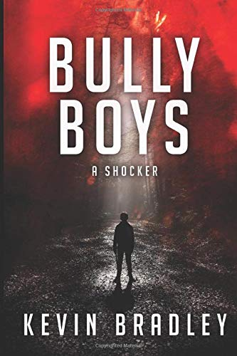 Bully Boys: A compelling insight into the shocking world of boarding school bullying (A Hedge & Cole Thriller Series supplement).