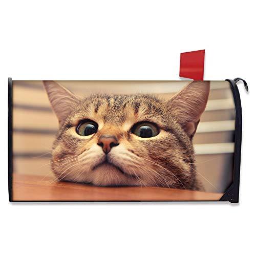 Hugs Idea Housse de boîte aux lettres magnétique en polyester Motif floral vintage 53 x 46 cm 21*18 inch chat