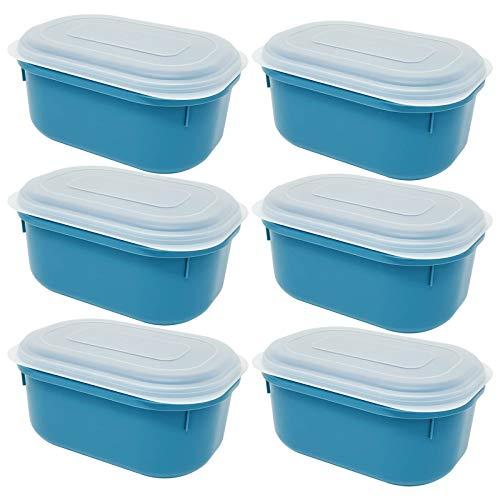Codil Lunchbox aus Kunststoff, luftdicht, oval, zum Einfrieren, Aufbewahren und Frischhalten, geeignet für Mikrowelle, Geschirrspüler und Kühlschränke (blau, 18,5 x 12,5 x 9,5 cm)
