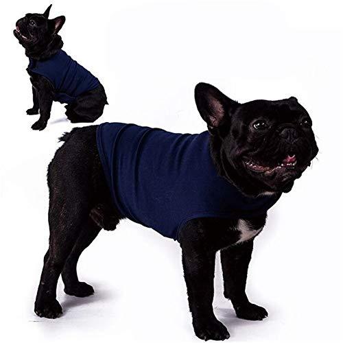 DC CLOUD Ropa para Perros Ropa Mascotas Perros Pequeños Perro recuperación Trajes Camiseta médica para Perros Chaqueta antiansiedad para Perro Blue,22