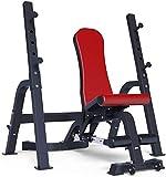 Cnley Forza Formazione Panca Press Peso Peso Fitness Tavolo Dumbbell Banco Panca Multifunzionale Pieghevole Pieghevole Squat Rack Home (Color : Red)