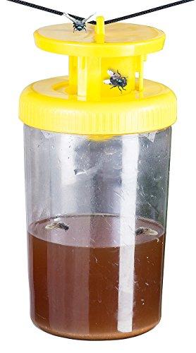 Exbuster Biologische Fliegenfalle: Fliegenfalle mit natürlichem Wirkstoff für 10 Wochen (Fliegenabwehr Terrasse)
