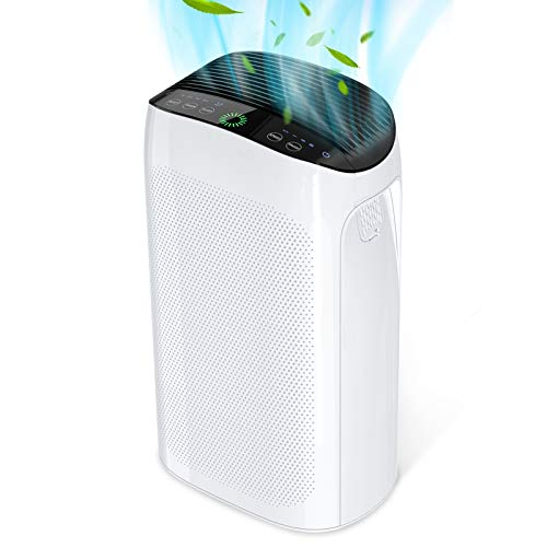 Air Purifiers for Home Large Room 495 ft², Air Choice True HEPA Filter Air Purifier for Bedroom,...