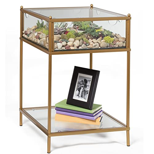 Square Terrarium Display End Table with Reinforced Glass in Gold Iron- 18' L x 18' W x 27' H- Great...