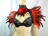 Set rot Federstola und Federkragen Feuervogel Phönix Kostüm Karneval Burlesque