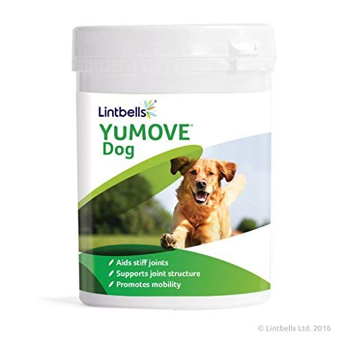 Lintbells YuMOVE Dog Joint Supplement for Stiff and Older Dogs - 600 (2x 300) Tablets