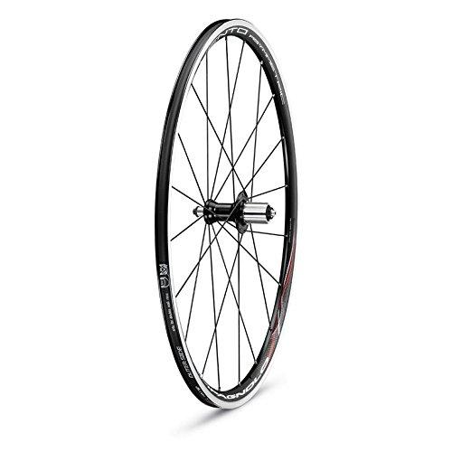 Campagnolo 0135640 - Juego de ciclismo