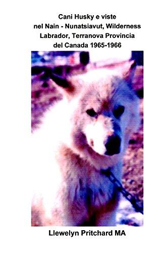 Cani Husky e viste nel Nain - Nunatsiavut, Wilderness Labrador, Terranova Provincia...