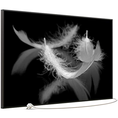 STEINFELD Bild Infrarotheizung mit Thermostat | Made in Germany | viele Motive 350-1200 Watt Rahmen schwarz (900 Watt, 018 Federn Schwarz Weiß)