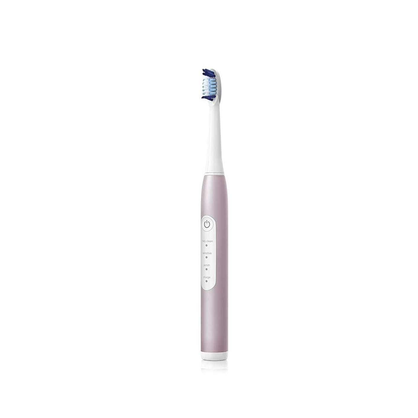 姓最も早いその結果電動歯ブラシ 防水誘導の充満スケーラーを白くする大人の音波の電動歯ブラシのスマートなタイミング (色 : B)