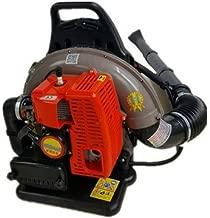 GOWE Professional 68CC Commercial Backpack Garden Yard Petrol Leaf Blower 2-Strokes Outdoor Gasoline Air Leaf Blower