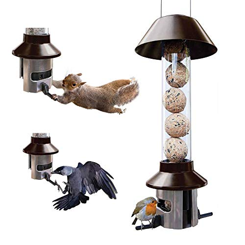 Squirrel Proof Wild Bird Feeder - Fat Ball / Suet Cake Feeder - Roamwild PestOff