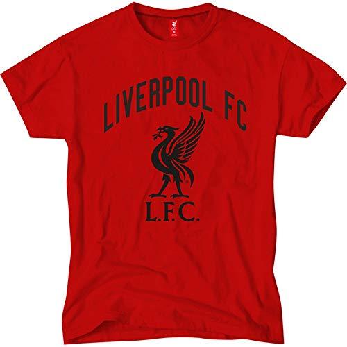 Liverpool Herren T-Shirt, Größe S