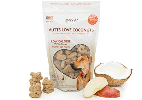 Dog Training Treats Coconut Apple – Vegetarian, Organic, Baked & Crunchy – Heart Healthy Diet Treats for Puppy or Large Pets – All Natural Fiber, No Grain, Gluten – Apple Fruit, Made in USA