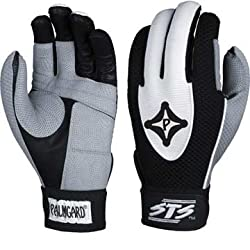 PalmGuard Batting Gloves