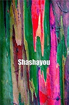 100 Stück seltene Regenbogen-Eukalyptus Bonsai-Baum Zierpflanzen Riesen Auffälliges Tropischer Baum für Garten Pflanzen der Außen Bonsai Geschenk: 11