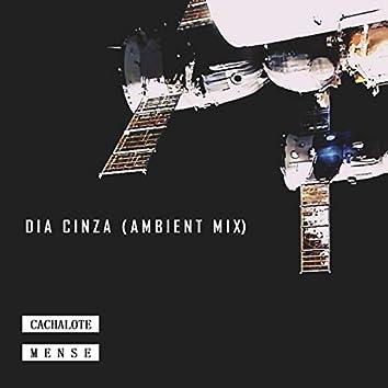 Dia Cinza (Ambent Mix)