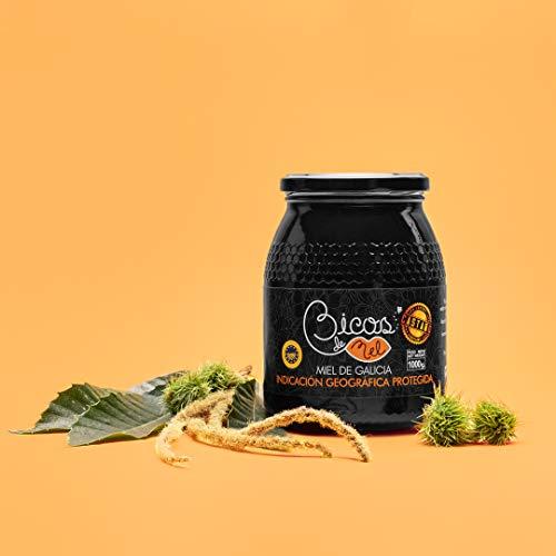 Miel Natural Monofloral Castaño 1KG Bicos de Mel…