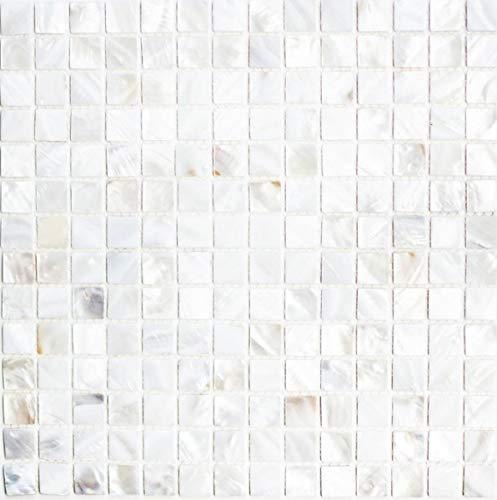 Piastrelle a mosaico con conchiglia, madreperla, MOS150-SM201