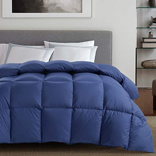 Luxurious All Season White Goose Down Comforter Duvet Insert King Size, 1000 Thread Count 100% Cotton Shell 750+ Fill Power 50 Oz Fill Weight, Hypoallergenic (White Solid, King) (Queen, Blue)