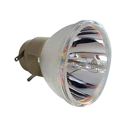 Ceybo DX760 Lamp//Bulb Replacement with Housing for BenQ Projector