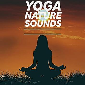 Meditation Nature Sounds For Yoga
