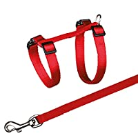 Continuously adjustable tape leash With snap buckles Country of origin:- Germany Package Dimensions : 39.5L x 63.0W x 39.5H (centimetres)