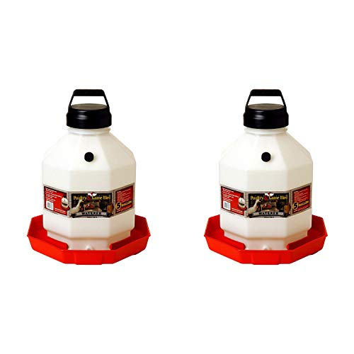 Little Giant PPF5 5 Gallon Automatic Poultry Waterer for Chickens, Red (2 Pack)