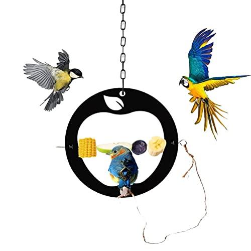 Eeauytr Alimentador de colibrí de Frutas,Comedero para pájaros Colgante,Suministros para pájaros Colgantes, decoración de jardín