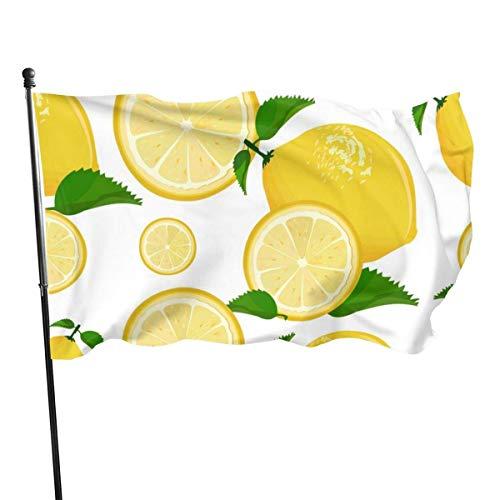 AGnight Résistant aux intempéries jus Citron Limonade Pamplemousse Citron Vert Citron Jardin Drapeau, Drapeau de fête de Famille - 3 X 5 pi